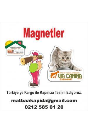 Magnetler